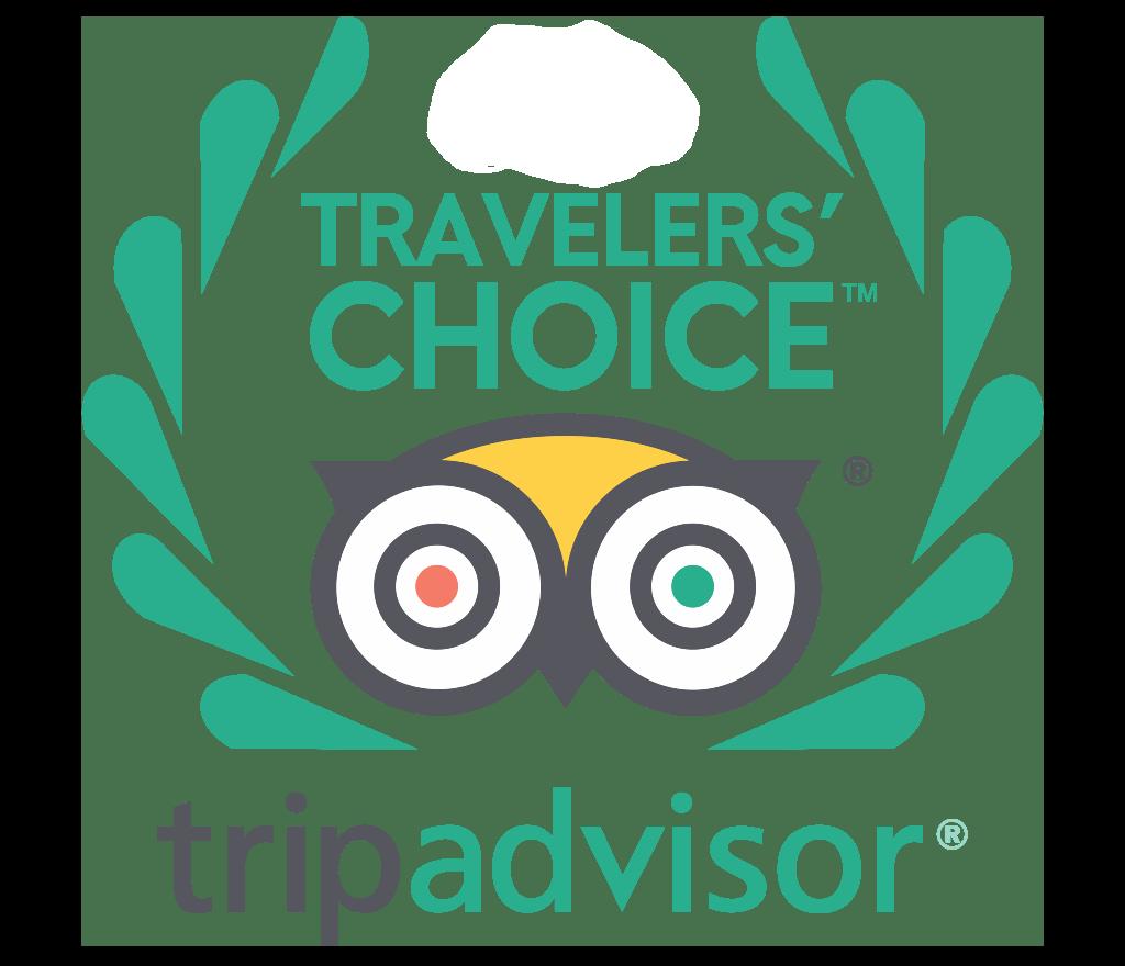2020 Travelers Choice Winner
